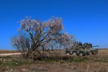 Haciendo un alto para comer a la sombra de un almendro que anuncia ya la primavera. © Carlos Molero